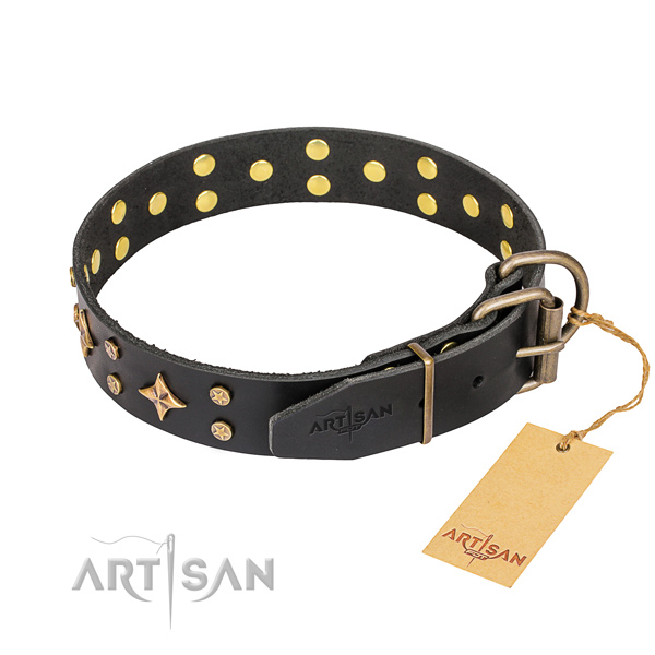 Remarkable genuine leather dog collar for daily use