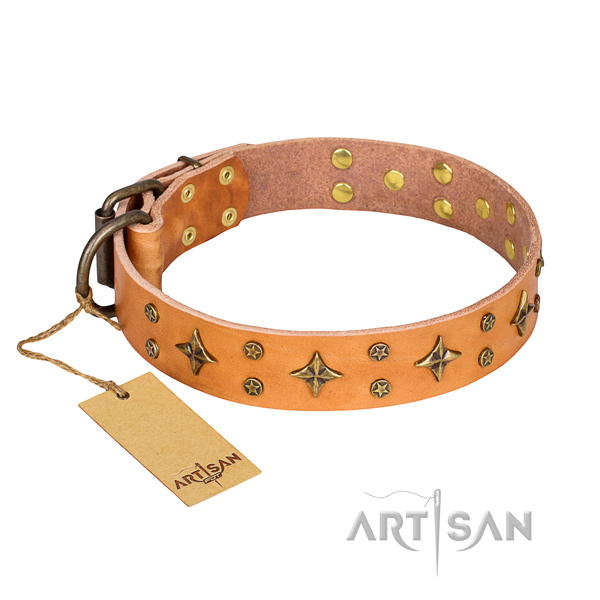 Awesome full grain genuine leather dog collar for everyday walking