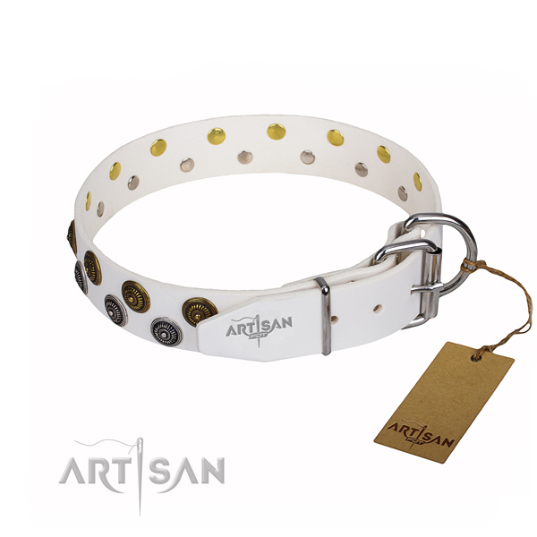 Everyday use leather collar with adornments for your pet