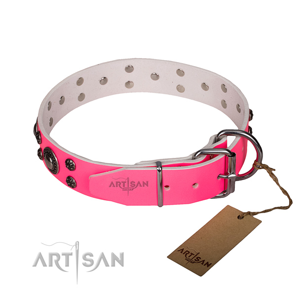 Daily use full grain leather collar with strong buckle and D-ring