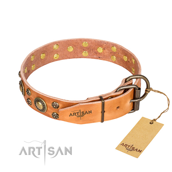 Stylish walking full grain leather collar with adornments for your dog