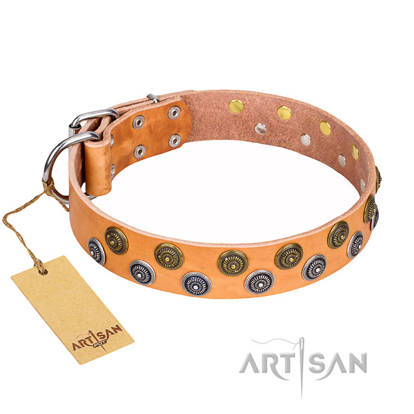 Handy use full grain leather collar with embellishments for your canine