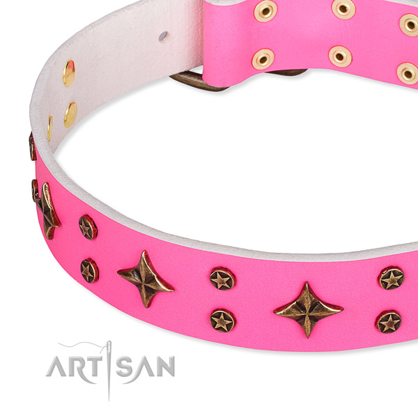 Full grain natural leather dog collar with exceptional studs