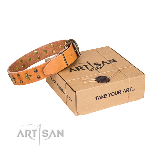 Adorned full grain genuine leather dog collar for stylish walking