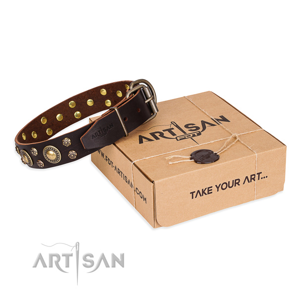 Fashionable natural genuine leather dog collar for walking in style