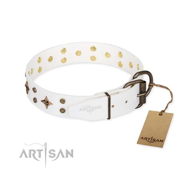 Everyday use genuine leather collar with adornments for your doggie