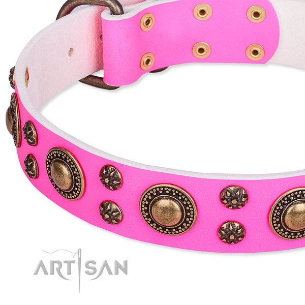 Natural genuine leather dog collar with remarkable adornments