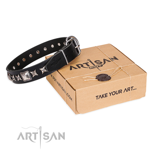 Adorned full grain leather dog collar for daily walking