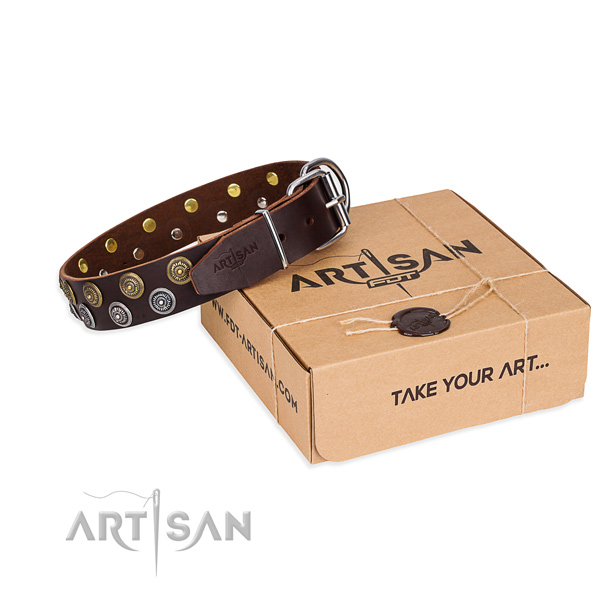 Genuine leather dog collar with studs for everyday walking