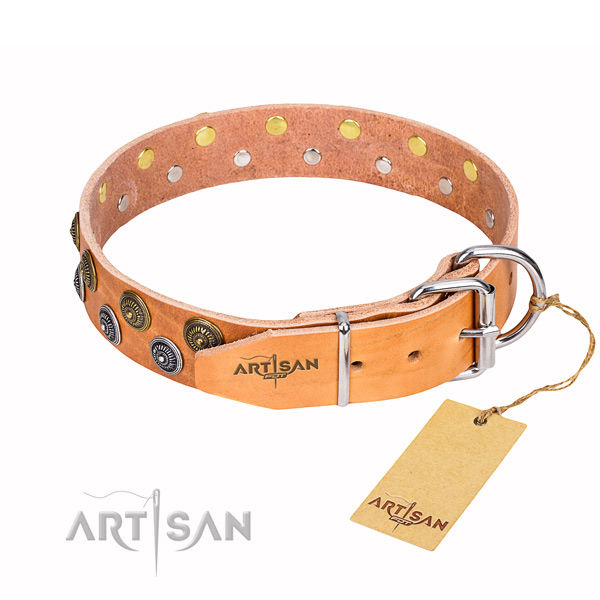 Top notch full grain genuine leather dog collar for walking
