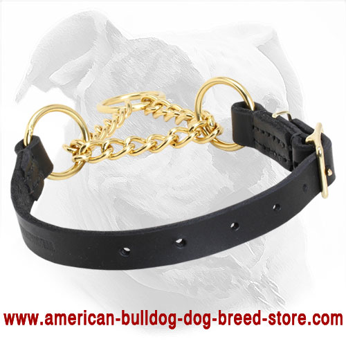 Leather Martingale American Bulldog Collar