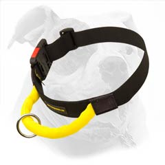 High quality nylon collar