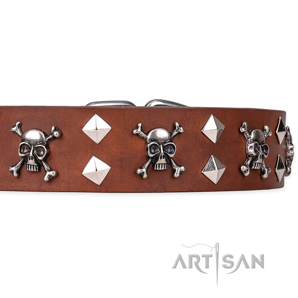 Heavy-duty leather dog collar with strong elements