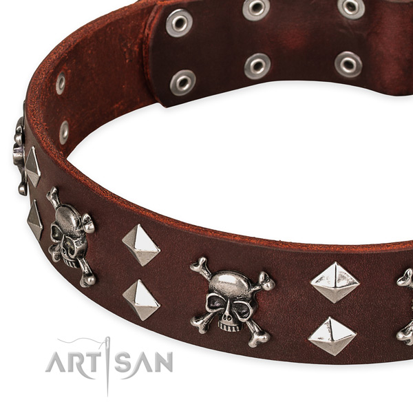 Day-to-day leather dog collar for reliable usage