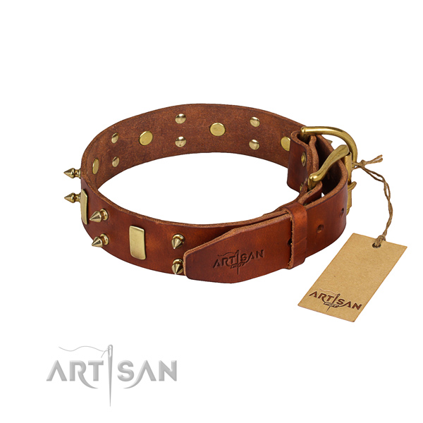 Natural leather dog collar with polished exterior
