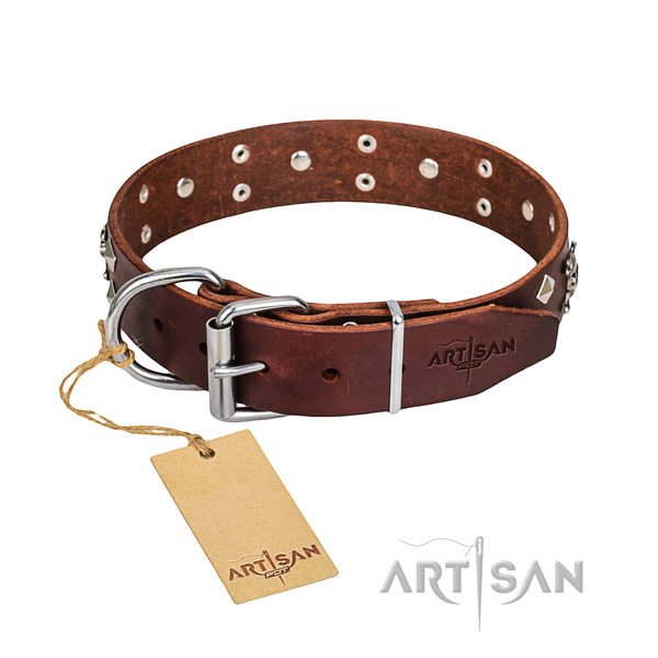 Daily leather dog collar with fancy studs