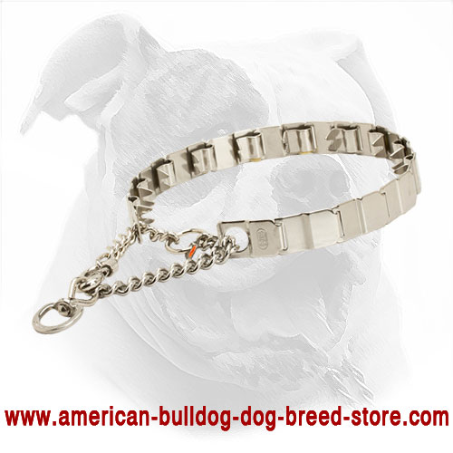 Neck Tech American Bulldog Collar