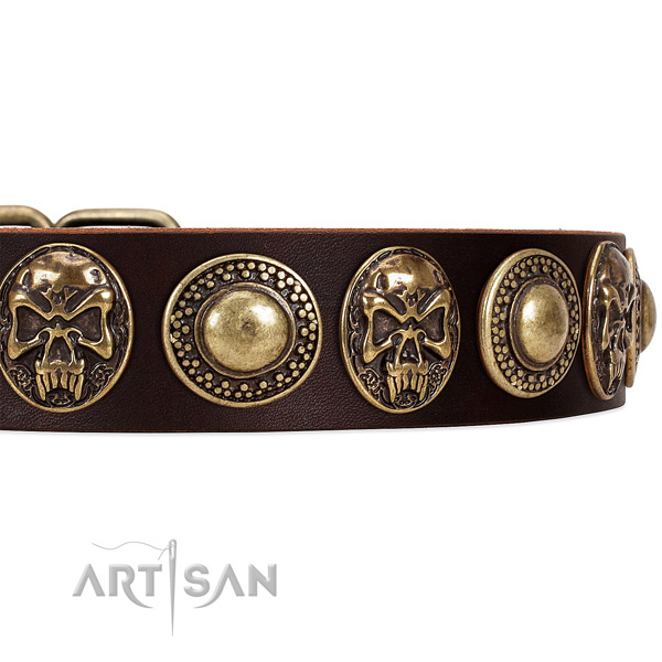 Full grain genuine leather dog collar with adornments for easy wearing