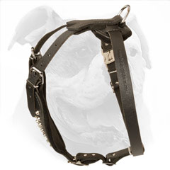 Adjustable leather harness for American Bulldog