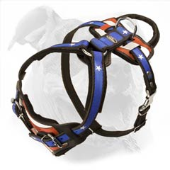 American Bulldog hand painted harness