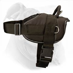 Easy to put on and off harness due to convenient buckle