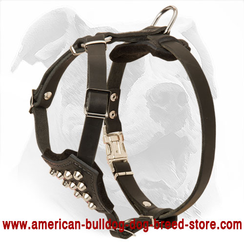 Leather American Bulldog Puppy Harness Decorated with Pyramids for Walking