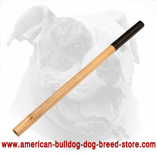 Dog Training Bamboo Stick for American Bulldog