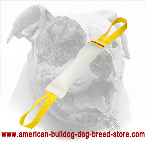American Bulldog Bite Tug Made of Fire Hose with Handles