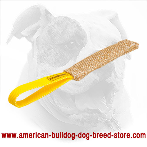 American Bulldog Bite Tug Made of Jute for Puppy Training