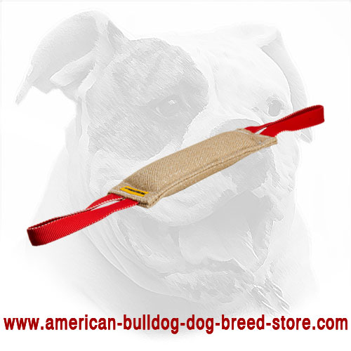American Bulldog Bite Tug Equipped with Handles
