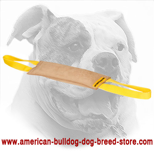 American Bulldog Bite Tug for Bite Training