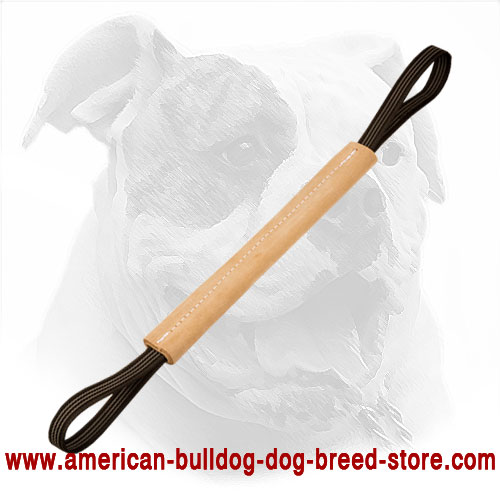 Leather Dog Bite Tug for American Bulldog Puppy