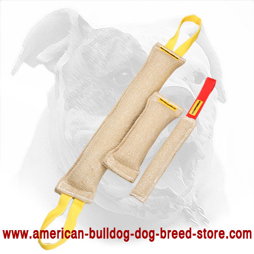 3 Jute Bite Tugs in One Training Set for American Bulldog