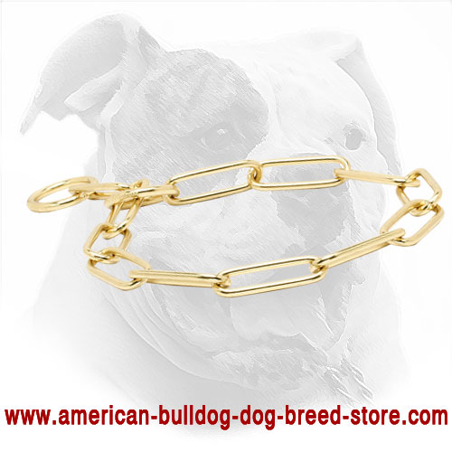 "Fur Saver Dog Collar for American Bulldog | ""Chain Trainer"""