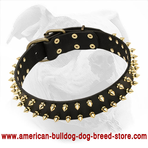 """Unveiled Luxury"" Spiked Leather Dog Collar for American Bulldog"