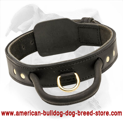 2 Ply Leather Dog Collar for American Bulldog