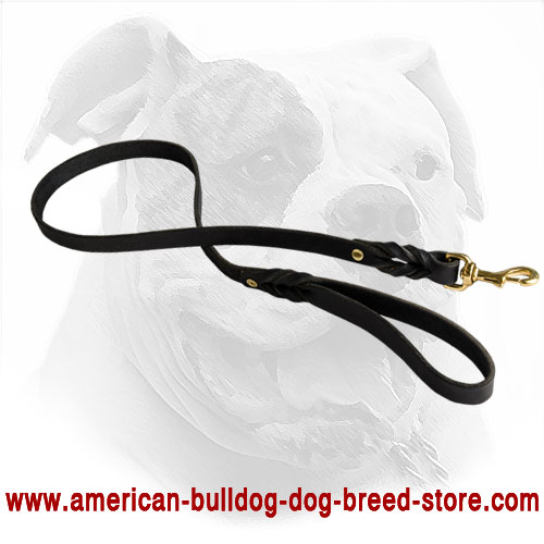 American Bulldog Leash Made of Durable Leather