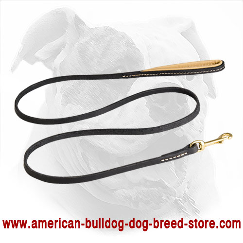 Durable Leather Dog Leash for American Bulldog Training