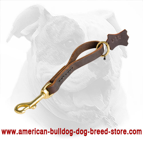 Leather Pull Tab Leash for American Bulldog