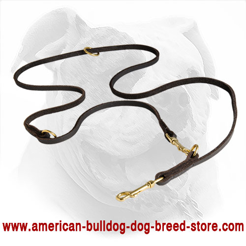 American Bulldog Leash Made of Soft Leather