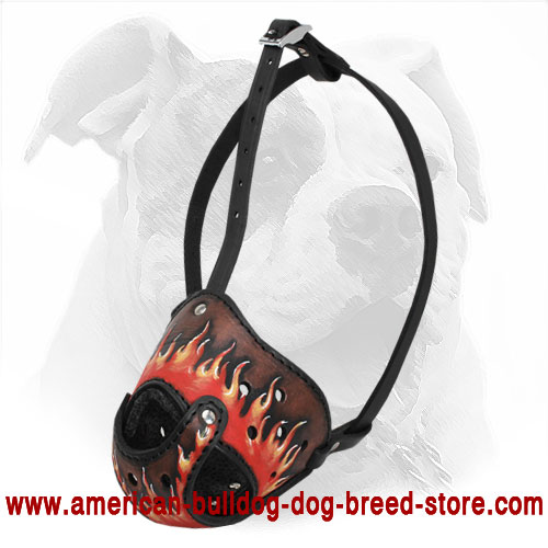 Handpainted Leather Dog Muzzle for American Bulldog