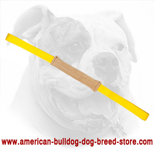 American Bulldog Bite Tug Made of Leather - Click Image to Close
