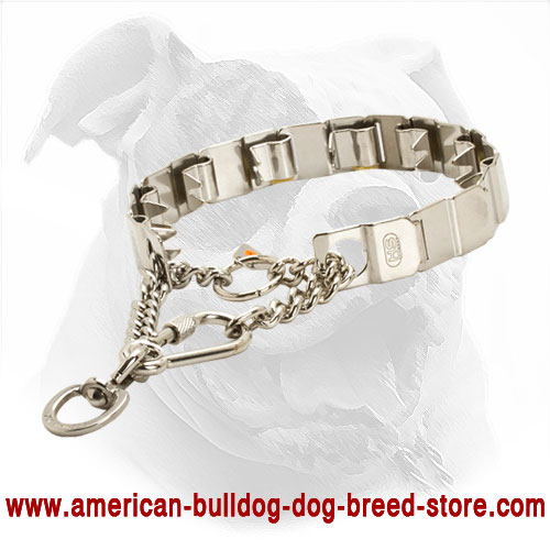 Stainless Neck Tech Dog Collar for American Bulldog