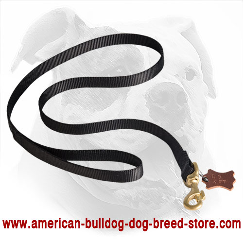 All Weather Nylon Dog Leash for American Bulldog