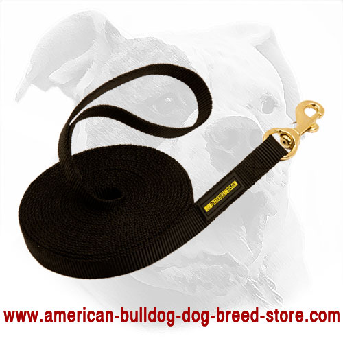 Strong Long Nylon Dog Leash for American Bulldog