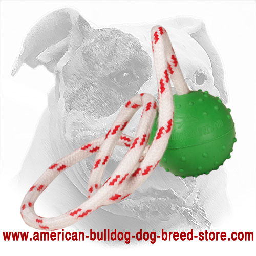 2 Inch American Bulldog Rubber Ball with Nylon String