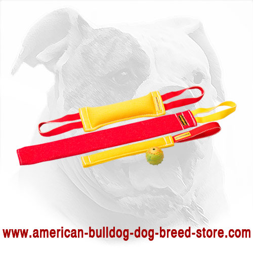 Training Set of Bite Tugs for American Bulldog Puppy + Gift for Free