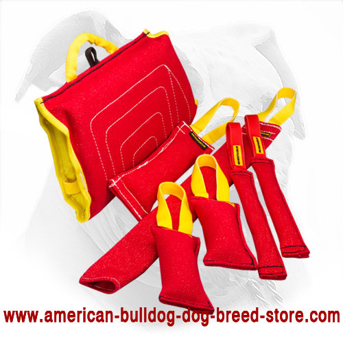 Training Set of Bite Tugs for American Bulldog Puppy