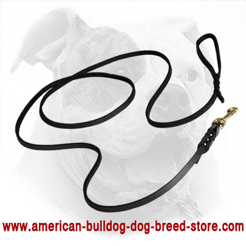 Braided Leather American Bulldog Leash for Walking and Training