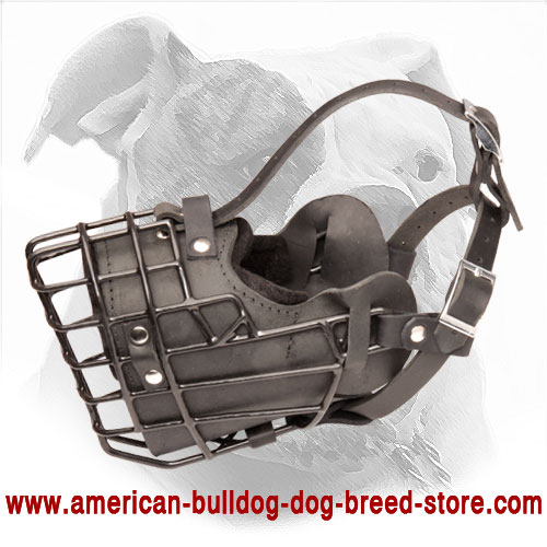 Winter Wire Cage Dog Muzzle with Leather Lined Interior